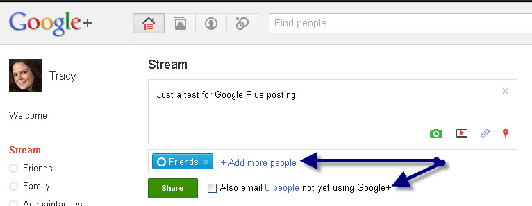 Who sees your posts on Google+